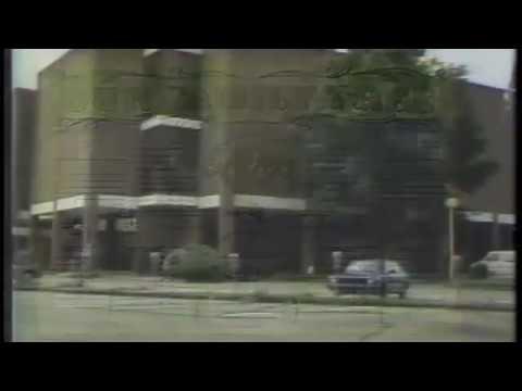 "1989-07-14 Lafayette Public Library ""Family Tree"" PSA 2"