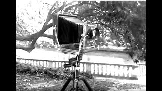Large Format Camera Shooting, Italy