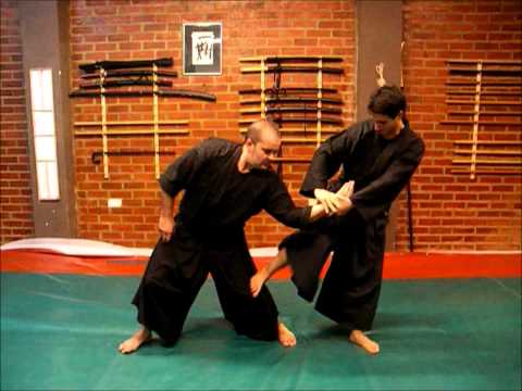 Ogawa Ryu - Spain December Training - Aikijujutsu Nihon me Image 1
