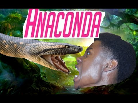 Anaconda - Nicki Minaj (Music Video Comedy Remix)