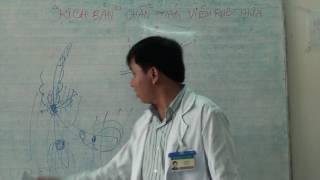 Chẩn đoán viêm ruột thừa theo vị trí giải phẫu