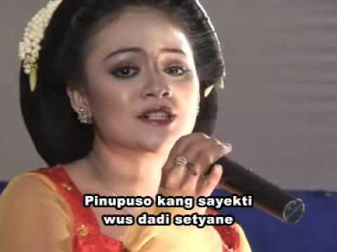 CS Sangga Buana   Cengkir Wungu Voc  Putri Kartikasari