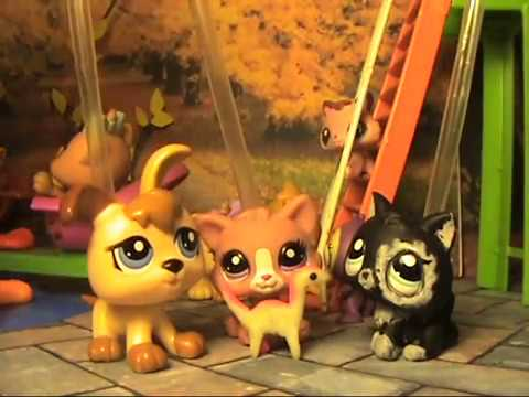 LPS сериал : Необычный дар ( 1 серия ) / Unusual Talent (episode 1) 猫