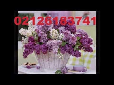 haznedarda çiçekçi