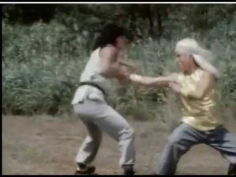 kung fight