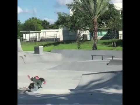 😵 @brandonknowless   Shralpin Skateboarding