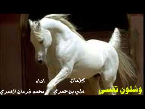 شيلة||وشلون تقسى2014||أداء محمد بن غرمان العمري||