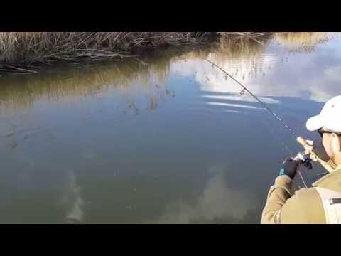 щука в мае видео на малых реках
