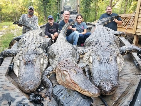 2017 SC Alligator Hunt HD