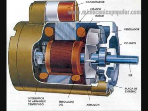 Video motor asíncrono trifásico
