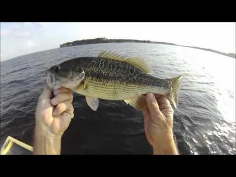 Summer Bass Fishing Toledo Bend Sept 18 2012