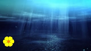 2 HOURS of Underwater Sound - How to Relax and Meditate - Sonido Debajo del agua para meditar