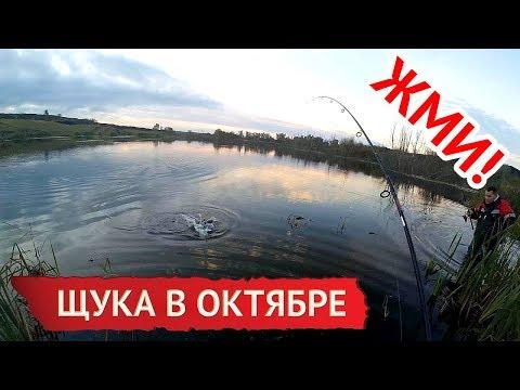 рыбалка на щуку на блесну с берега