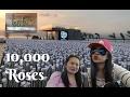 10,000 Roses Cafe and Lantaw Native Restaurant, Cordova Cebu Philippines | VLOG 02 MP3