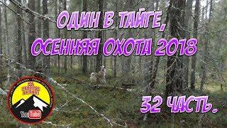 Рабочий голос у Тулана /Осенняя охота 2018/ 32 часть.