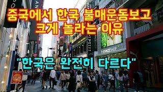 """중국에서 한국 불매운동을 보고 크게 감탄하는 이유  """"한국은 완전히 다르다"""""""