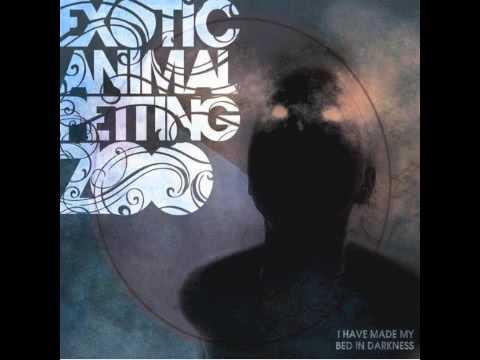 Exotic Animal Petting Zoo - Moonshoes
