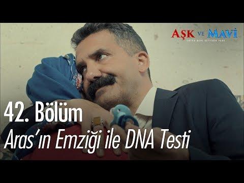 Aras'ın emziği ile DNA testi - Aşk ve Mavi 42. Bölüm