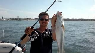 Dhiver la pêche sur ripousa