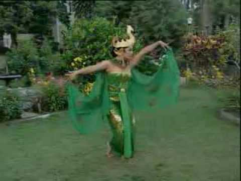 Tari Merak video