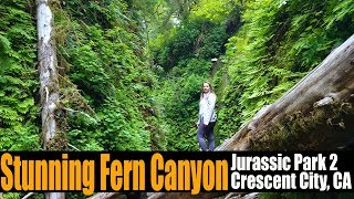 Motorhome RV Living | Fern Canyon from Jurassic Park 2 | Crescent City, CA