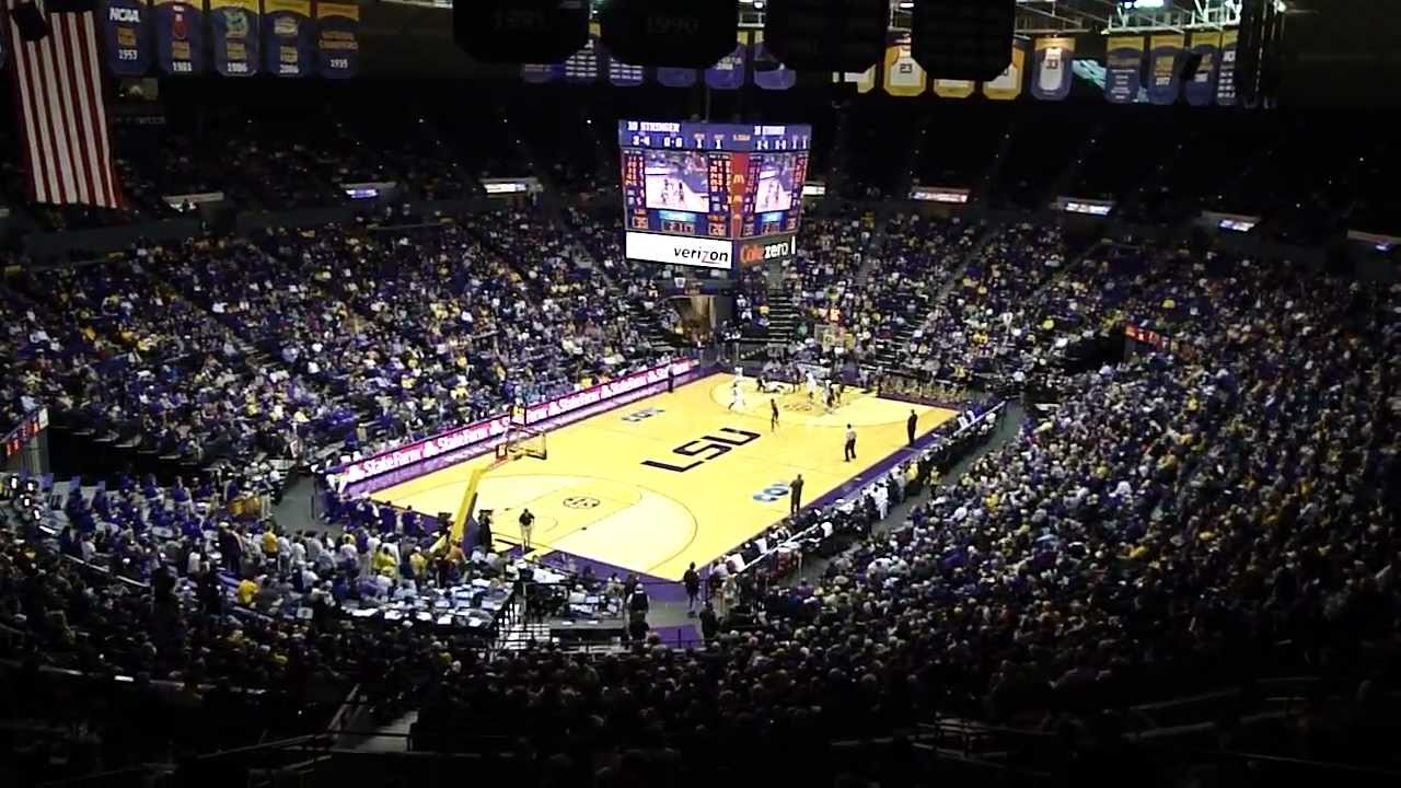 Image Result For Lsu Basketball