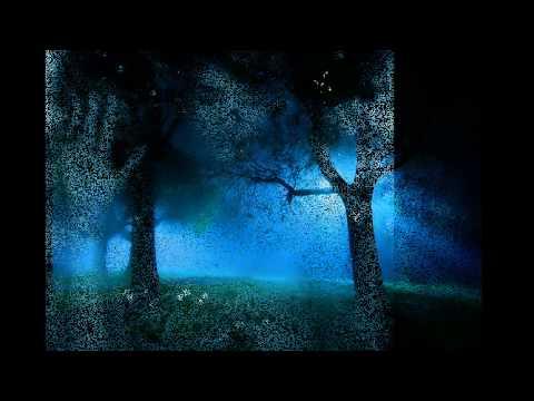 Воскресение, Константин Никольский - Ночная Птица