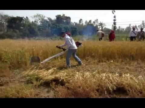 Emergence of latest technologies in Nepali Agriculture