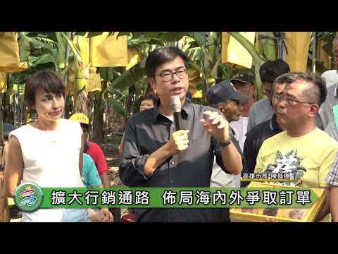 訪視香蕉產業 陳其邁:觀光局訂購11000公斤、與家樂福合作協助蕉農