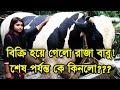 অবশেষে বিক্রি হয়ে গেলো রাজা বাবু | রাজাবাবুকে কে কিনলো?? | The Huge Qurbani Cow Named Raja Babu