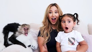 SURPRISING ELLE WITH A PET MONKEY!!!