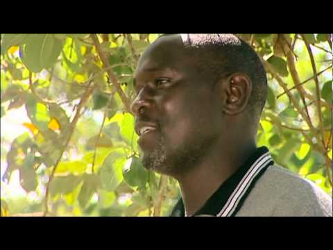 Series 1-Episode 4 [Shamba Shape Up Episode 4], Scene 2