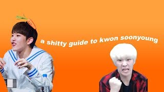 a shitty guide to kwon soonyoung