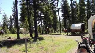 Our first year on the Pendleton Round-Up Wagon Train 2012 Part 1