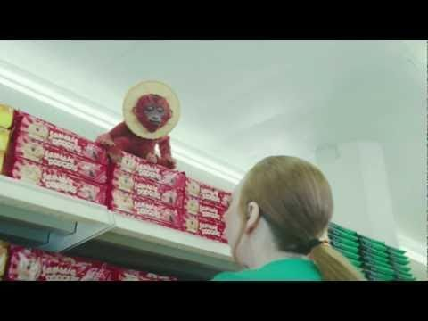 New TV advert with Jammie and Toffee Dodgers monkeys