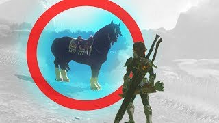 Why Breath of the Wild's Horses Work | Game Mechanics Explained