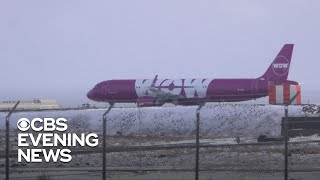 WOW Air goes bust, leaving passengers stranded