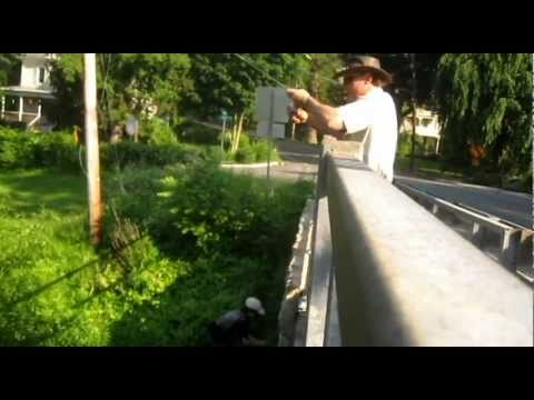 NJ Fishing - Watch Ken Beam & Adam catch Trout off the Bridge in Califon New Jersey 6/18/2011