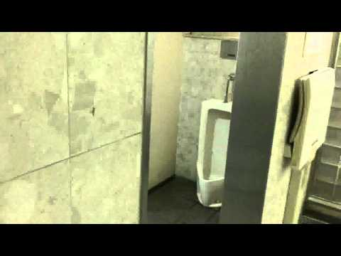 Urinal In Women`s Toilet? video