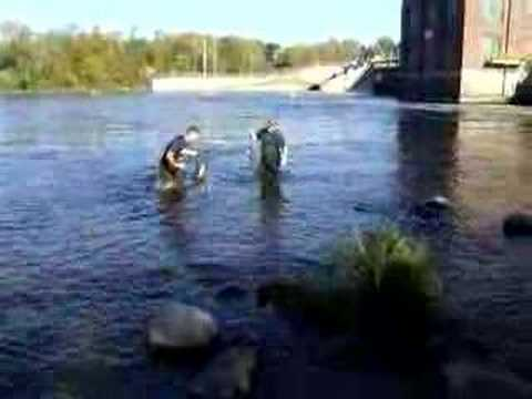 Salmon fishing on St. Joseph river in Berrien Springs, MI