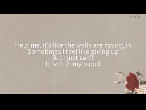 Shawn Medes-In my blood (lyrics)