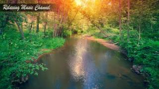Успокаивающая Музыка для Релаксации и Медитации Пианино: Гипнотическая Музыка для Сна и Лечения Ауры