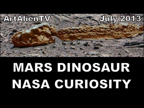 Insect Fossils on Mars Mars Alien Dinosaur Fossil