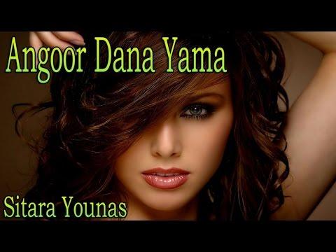 media sitara younis dhoka yama dhoka pashto new song