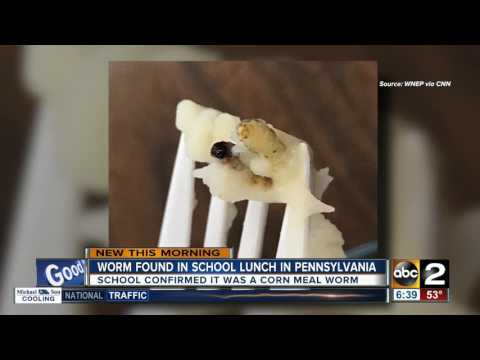 PA Student finds worm in school lunch
