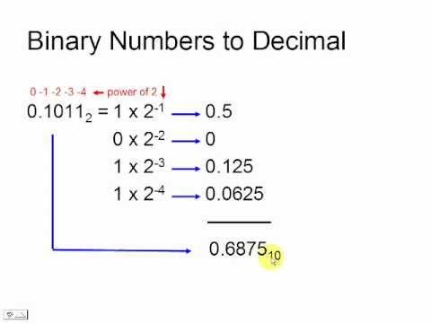 Binary tree o notation