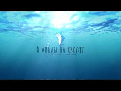 У акулы на хвосте - Видеосъемка в Харькове - DartsVideo