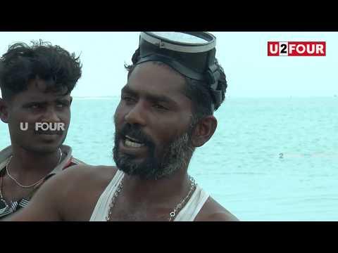 Dhanushkodi Neechal Kali son exposed Arichan munai touristor awareness speech