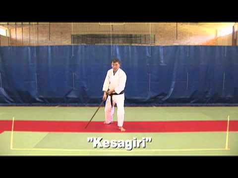 Aikido - Jyo and Bokken exercises Image 1