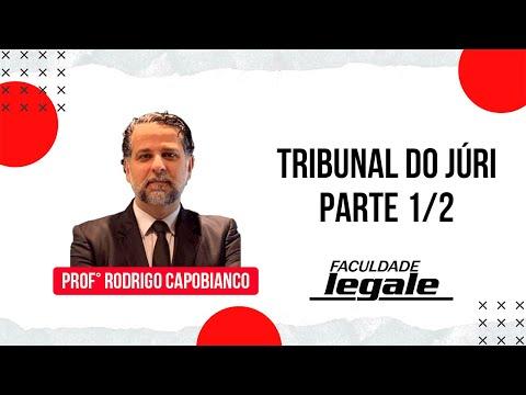 TRIBUNAL DO JÚRI - PROF. CAPOBIANCO - PARTE 1/2